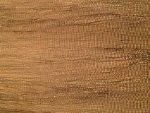 картина штофа флористическая безшовная королевские обои Бумага предпосылки золота, текстура старым огорченный годом сбора виногра Стоковое Изображение