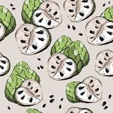 Картина яблока сахара безшовная, стиль эскиза Стоковое фото RF