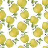 Картина яблок акварели безшовная Стоковые Изображения