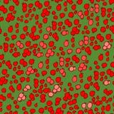 картина ягоды Стоковая Фотография