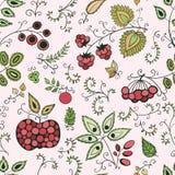 Картина ягоды безшовная Стоковая Фотография RF