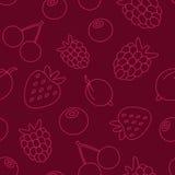 Картина ягоды Стоковое фото RF