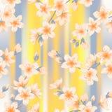 Картина японского вектора ветвей Сакуры вишневого цвета безшовная стоковые фотографии rf
