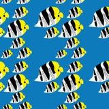 картина butterflyfish безшовная Стоковая Фотография RF