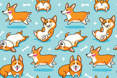 Картина Corgi безшовная Смешная предпосылка с собаками шаржа Стоковое Изображение RF
