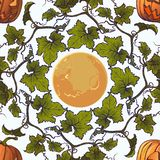 картина halloween безшовная Тыквы и луна Хаотическое распределение элементов белизна изолированная предпосылкой иллюстрация вектора