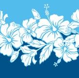 картина hibiscus граници гибридная безшовная Стоковая Фотография