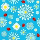 картина ladybird стоцвета безшовная бесплатная иллюстрация