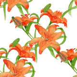 Картина lili акварели безшовная Стоковые Фото
