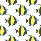 Картина Moorish рыб идола безшовная Cornutus Zanclus иллюстрация вектора