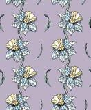 Картина Narcissus безшовная Стоковые Фото