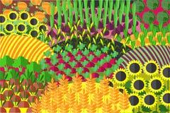 Картина Plenteous полей безшовная жизнь ингридиентов хлебоуборки хлопьев хлеба предпосылки здоровая все еще Стоковая Фотография