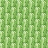 Картина Succulents безшовная Стоковые Изображения