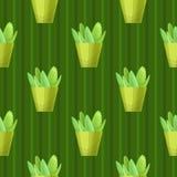 Картина Succulents безшовная Стоковое Изображение RF