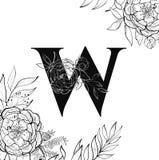 Картина w письма алфавита цветка иллюстрация штока