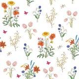 Картина wildflowers моды безшовная Стоковое Изображение RF