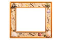 Картинная рамка раковины стоковые фотографии rf