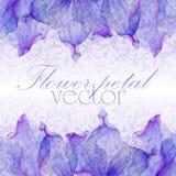 Картины акварели флористические круглые Стоковое фото RF
