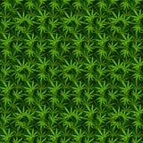 Картины вектора предпосылки марихуаны безшовные Стоковая Фотография