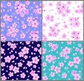 Картины вишневых цветов безшовные иллюстрация вектора
