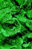Картины Зеленый Освободитесь, но изгибчивый, потому что оно имеет более светлое Вэй Стоковое Фото