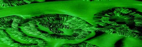 Картины Зеленый Освободитесь, но изгибчивый, потому что оно имеет более светлое Вэй Стоковые Фото