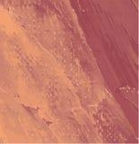 Картины маслом Стоковая Фотография