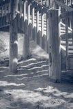 Картины на пляже Стоковое Фото