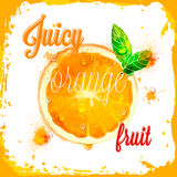 Картины оранжевого вектора сочные отрезанного плодоовощ Стоковые Изображения RF