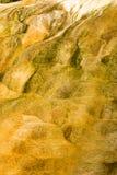 картины природы Стоковая Фотография RF