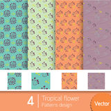 4 картины тропического дизайна с цветами тона Стоковая Фотография