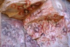 Картины утеса в Патагонии Стоковое Изображение RF