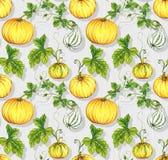 Картины хеллоуина дизайн тыквы kurbis безшовный Стоковые Фотографии RF