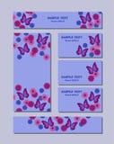 Картины цветка различных размеров с бабочками, маргаритками и cornflowers Для дизайна романтичных и пасхи иллюстрация вектора