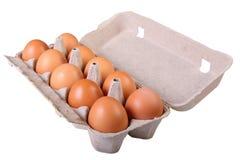 картон коричневого цвета коробки предпосылки eggs изолированная бортовая белизна Стоковая Фотография RF