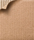 Картон образца стоковая фотография rf
