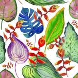 Карточка акварели с красивыми цветками Цветет иллюстрация акварели все все предметы флористической иллюстрации элементов состава  Стоковые Изображения