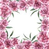 Карточка акварели флористическая троповая Вручите покрашенную границу с цветками олеандра при листья и ветвь изолированные на бел Стоковые Фото
