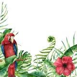 Карточка акварели экзотическая флористическая с попугаем Покрашенная рука тропической Стоковые Фото