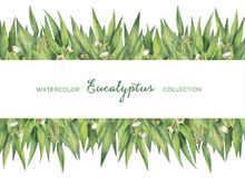 Карточка акварели зеленая флористическая при листья и ветви евкалипта изолированные на белой предпосылке иллюстрация вектора
