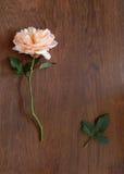 Карточка английского языка розовая и пустая для текста на древесине Стоковые Изображения