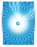 Карточка вектора цветка хризантемы вектора голубая. Стоковая Фотография RF