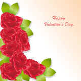 Карточка дня Валентайн розы красного цвета Стоковое Изображение