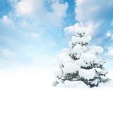 Карточка зимы Стоковая Фотография RF