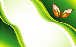 карточка идет зеленый шаблон Стоковое Изображение RF