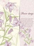 Карточка дизайна лилии Стоковая Фотография RF