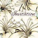 Карточка дизайна лилии иллюстрация вектора