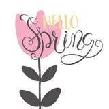 Карточка литерности - здравствуйте! весна Стоковое Изображение RF