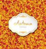 Карточка осени на апельсине выходит текстура, предпосылка в сентябре Стоковое Изображение RF