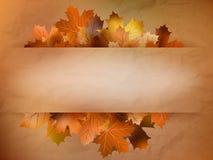 Карточка осени покрашенных листьев. EPS 10 Стоковые Изображения RF